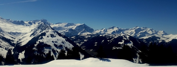 powder skiing in gstaad